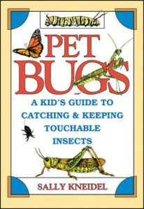 4 Image of Pet Bugs