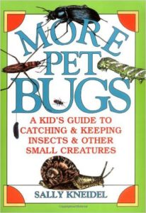 8 Image of More Pet Bugs_
